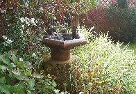 Springbrunnen mit Frosch
